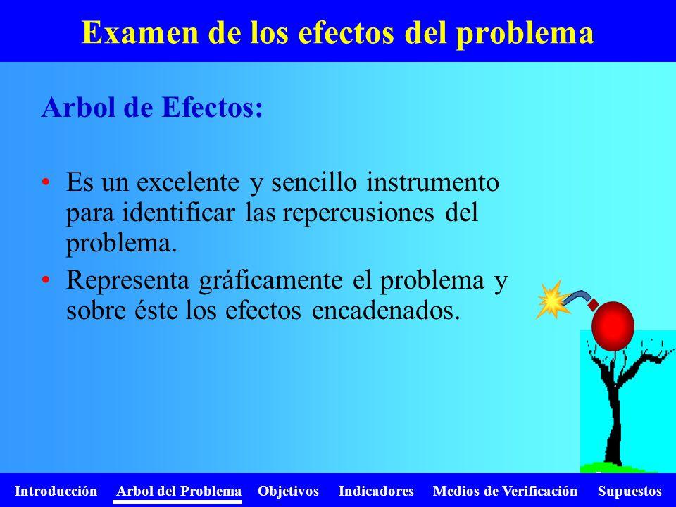 Introducción Arbol del Problema Objetivos Indicadores Medios de Verificación Supuestos Examen de los efectos del problema Es un excelente y sencillo i