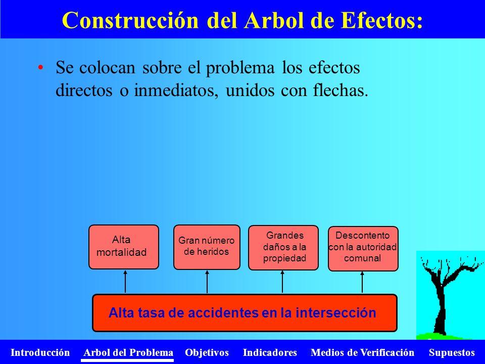 Introducción Arbol del Problema Objetivos Indicadores Medios de Verificación Supuestos Se colocan sobre el problema los efectos directos o inmediatos,