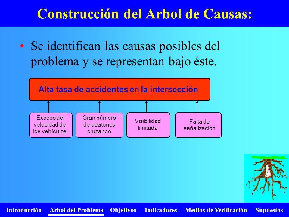 Introducción Arbol del Problema Objetivos Indicadores Medios de Verificación Supuestos Se identifican las causas posibles del problema y se representa