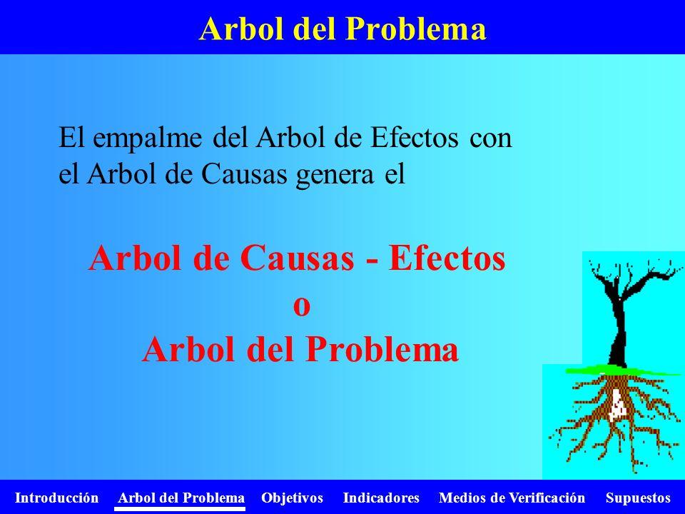 Introducción Arbol del Problema Objetivos Indicadores Medios de Verificación Supuestos Arbol del Problema El empalme del Arbol de Efectos con el Arbol