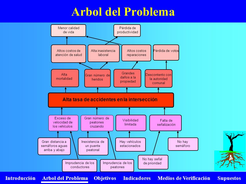 Introducción Arbol del Problema Objetivos Indicadores Medios de Verificación Supuestos Arbol del Problema Alta mortalidad Grandes daños a la propiedad