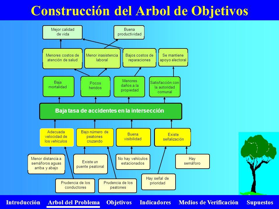 Introducción Arbol del Problema Objetivos Indicadores Medios de Verificación Supuestos Construcción del Arbol de Objetivos Alta mortalidad Grandes dañ