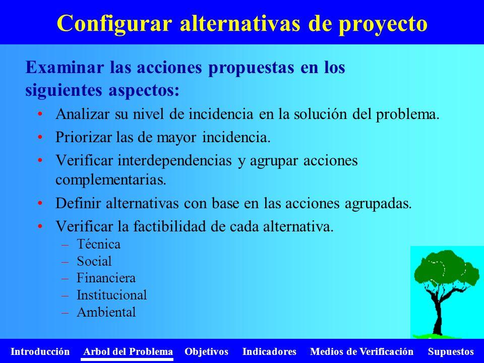 Introducción Arbol del Problema Objetivos Indicadores Medios de Verificación Supuestos Configurar alternativas de proyecto Analizar su nivel de incide