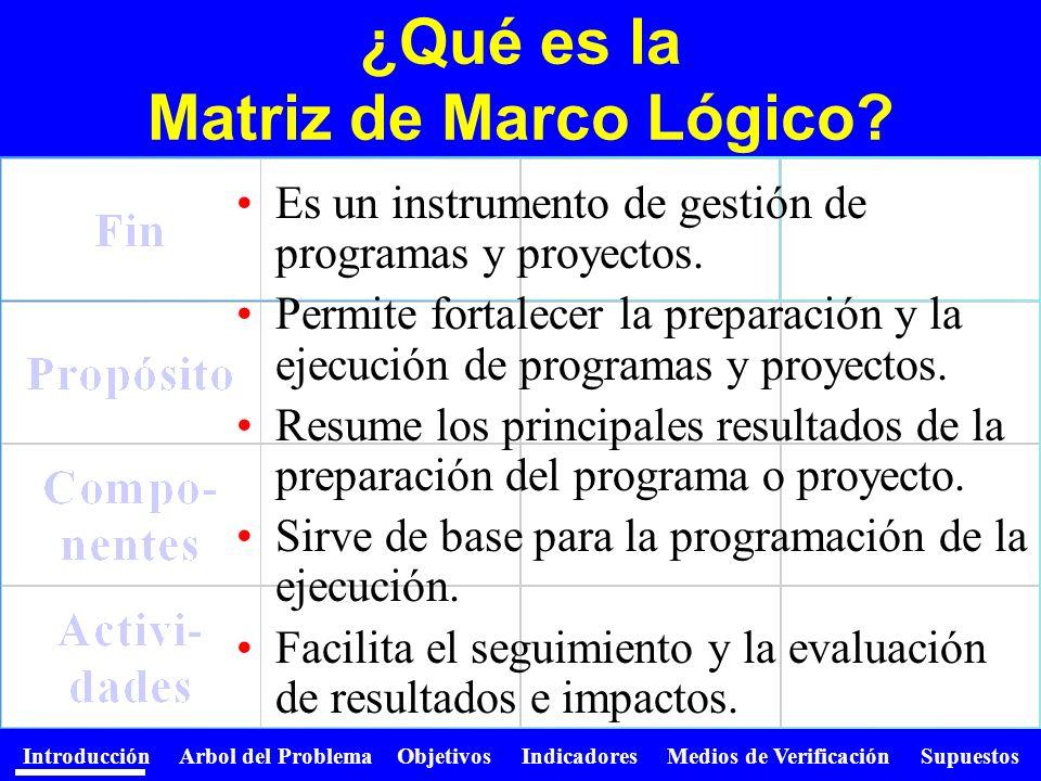 Introducción Arbol del Problema Objetivos Indicadores Medios de Verificación Supuestos Es un instrumento de gestión de programas y proyectos. Permite
