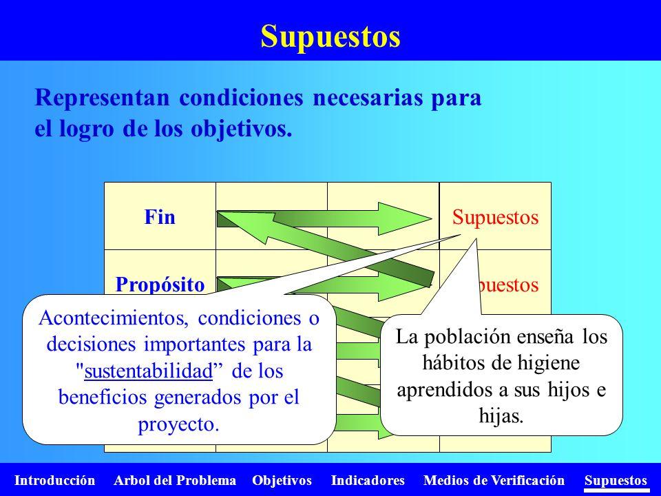 Introducción Arbol del Problema Objetivos Indicadores Medios de Verificación Supuestos Supuestos Fin Propósito Compo- nentes Activi- dades Supuestos A