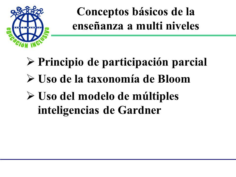 Conceptos básicos de la enseñanza a multi niveles Principio de participación parcial Uso de la taxonomía de Bloom Uso del modelo de múltiples intelige