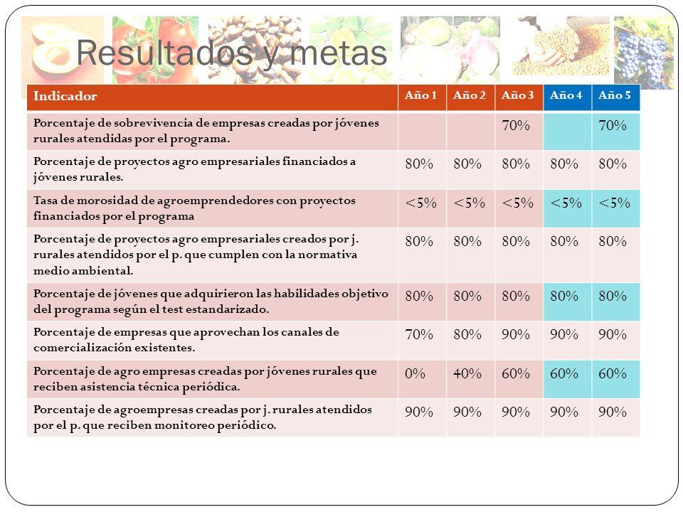 Resultados y metas Indicador Año 1Año 2Año 3Año 4Año 5 Porcentaje de sobrevivencia de empresas creadas por jóvenes rurales atendidas por el programa.