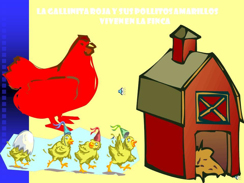 La gallinita roja y sus pollitos amarillos Viven en la finca