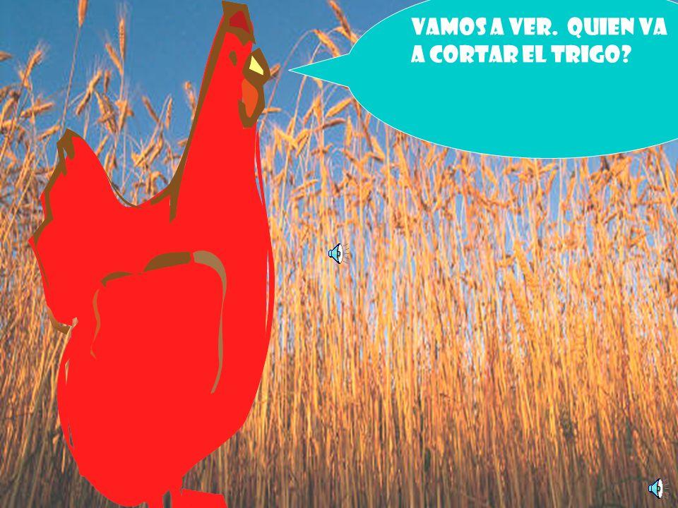 Pues bien, yo voy a sembrar los granos de trigo Dice la gallinita roja. Y los siembra. El trigo crece y crece y crece