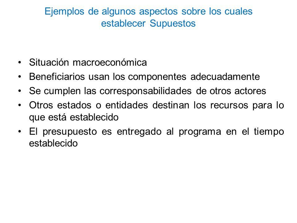 Ejemplos de algunos aspectos sobre los cuales establecer Supuestos Situación macroeconómica Beneficiarios usan los componentes adecuadamente Se cumple