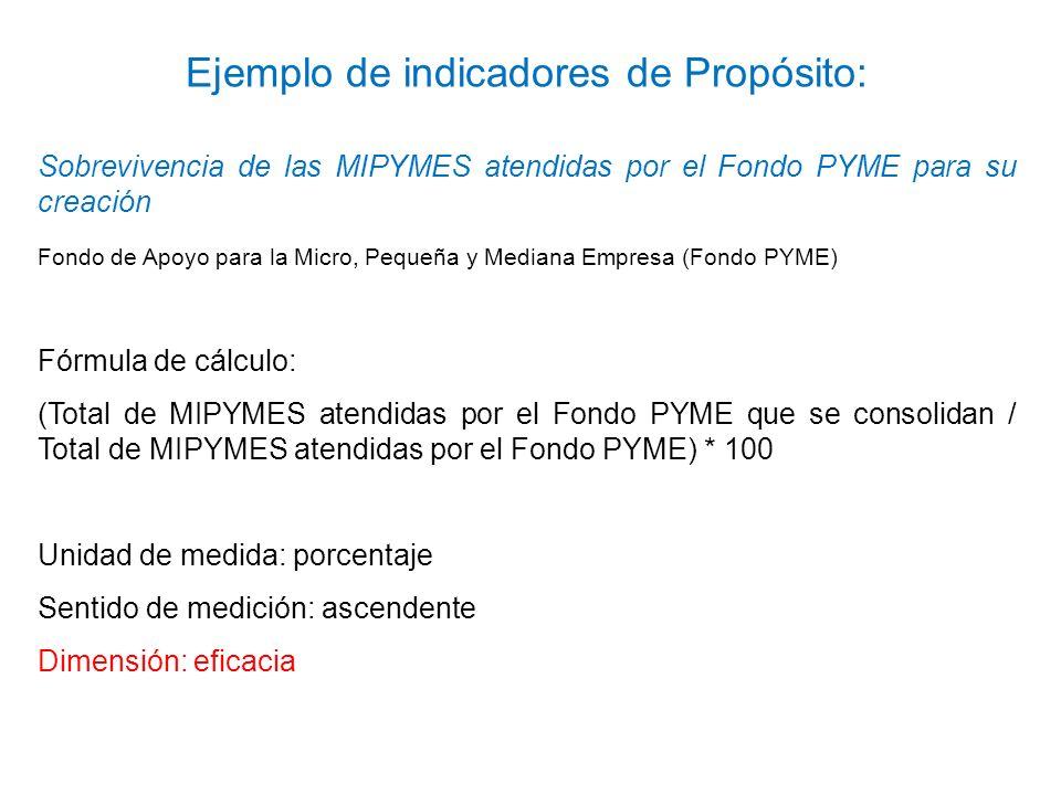 Sobrevivencia de las MIPYMES atendidas por el Fondo PYME para su creación Fondo de Apoyo para la Micro, Pequeña y Mediana Empresa (Fondo PYME) Fórmula
