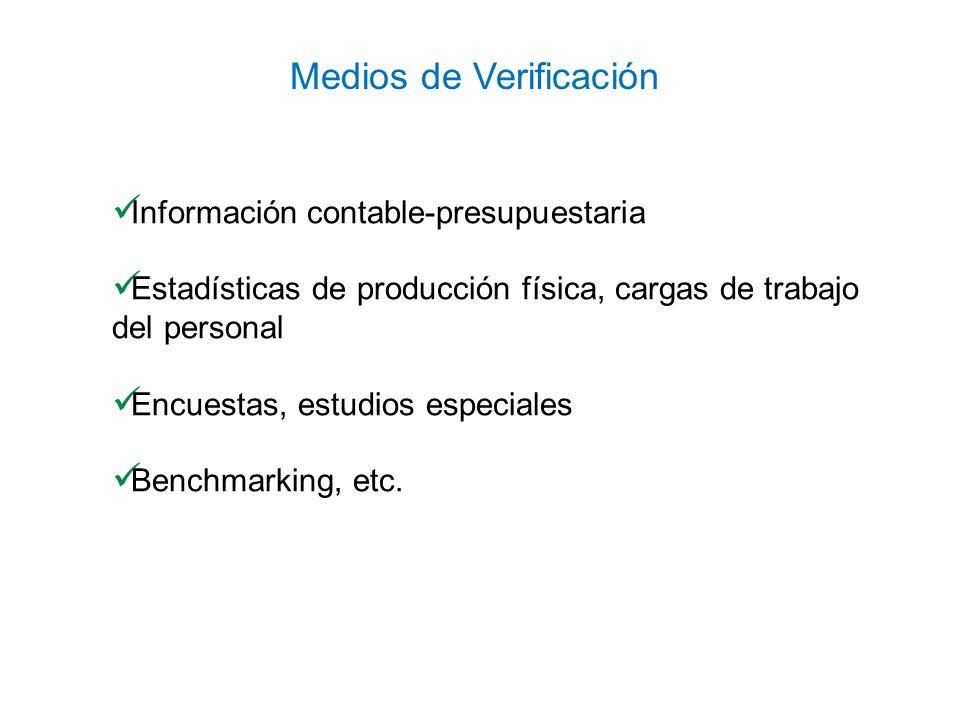 Información contable-presupuestaria Estadísticas de producción física, cargas de trabajo del personal Encuestas, estudios especiales Benchmarking, etc