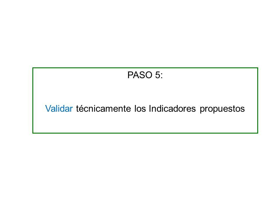 PASO 5: Validar técnicamente los Indicadores propuestos