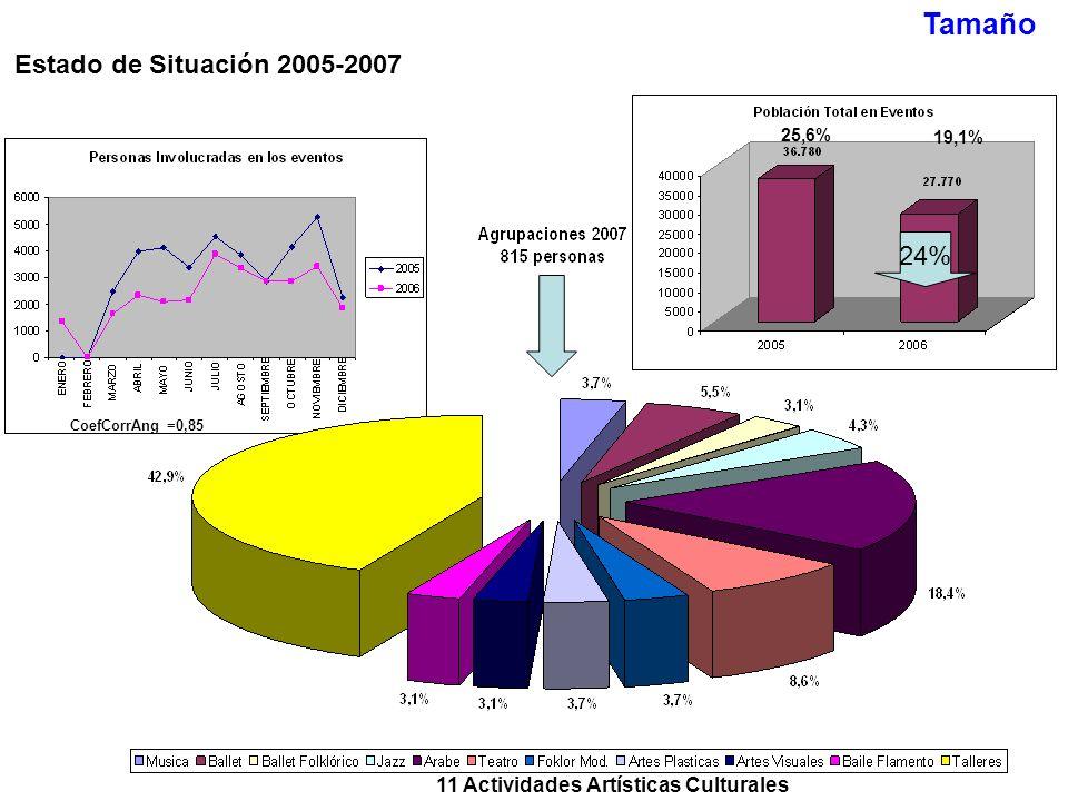 11 Actividades Artísticas Culturales Tamaño Estado de Situación 2005-2007 24% 25,6% 19,1% CoefCorrAng =0,85