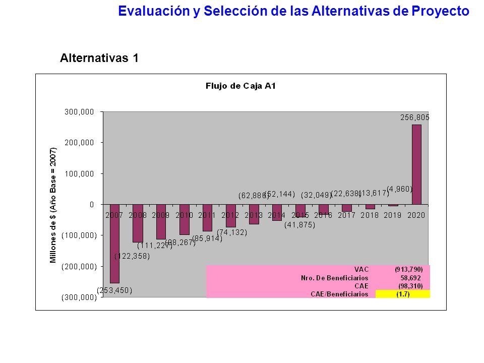 Evaluación y Selección de las Alternativas de Proyecto Alternativas 1