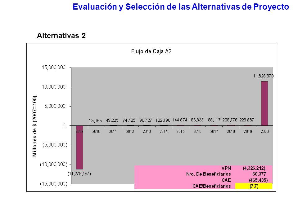 Evaluación y Selección de las Alternativas de Proyecto Alternativas 2