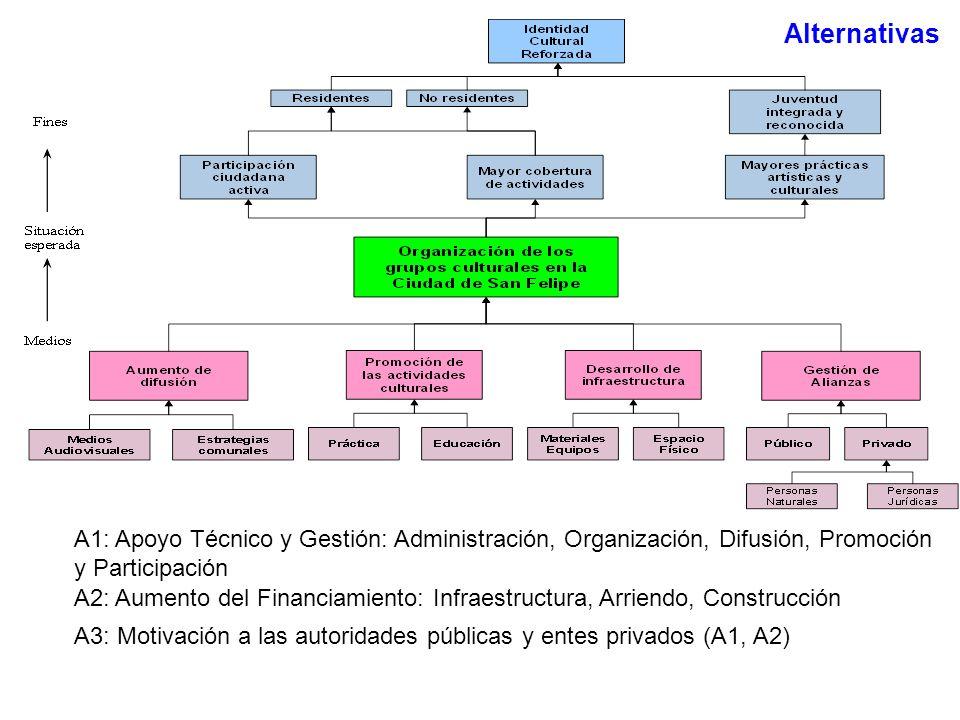 A2: Aumento del Financiamiento: Infraestructura, Arriendo, Construcción A1: Apoyo Técnico y Gestión: Administración, Organización, Difusión, Promoción