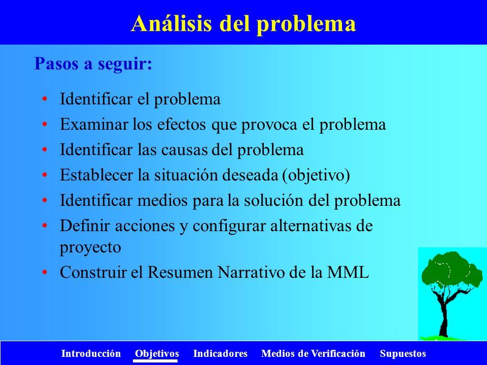 Introducción Objetivos Indicadores Medios de Verificación Supuestos Análisis del problema Identificar el problema Examinar los efectos que provoca el