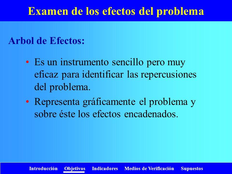 Introducción Objetivos Indicadores Medios de Verificación Supuestos Examen de los efectos del problema Es un instrumento sencillo pero muy eficaz para