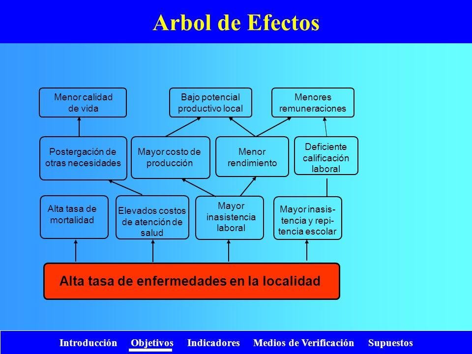 Introducción Objetivos Indicadores Medios de Verificación Supuestos Arbol de Efectos Alta tasa de enfermedades en la localidad Alta tasa de mortalidad