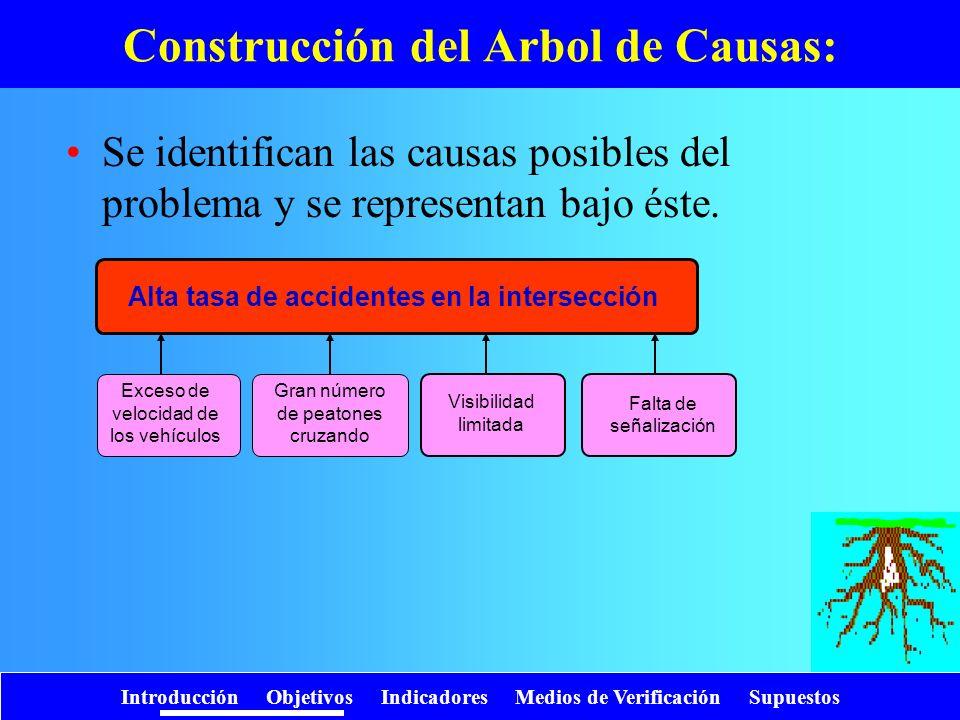 Introducción Objetivos Indicadores Medios de Verificación Supuestos Se identifican las causas posibles del problema y se representan bajo éste. Constr