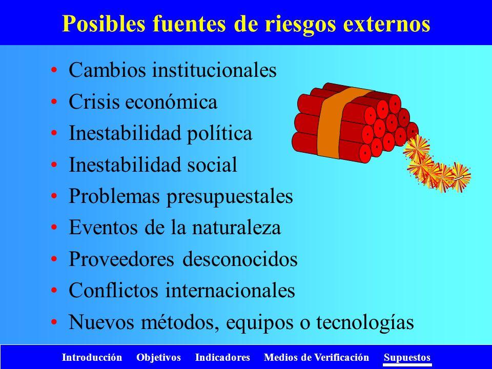 Introducción Objetivos Indicadores Medios de Verificación Supuestos Posibles fuentes de riesgos externos Cambios institucionales Crisis económica Ines