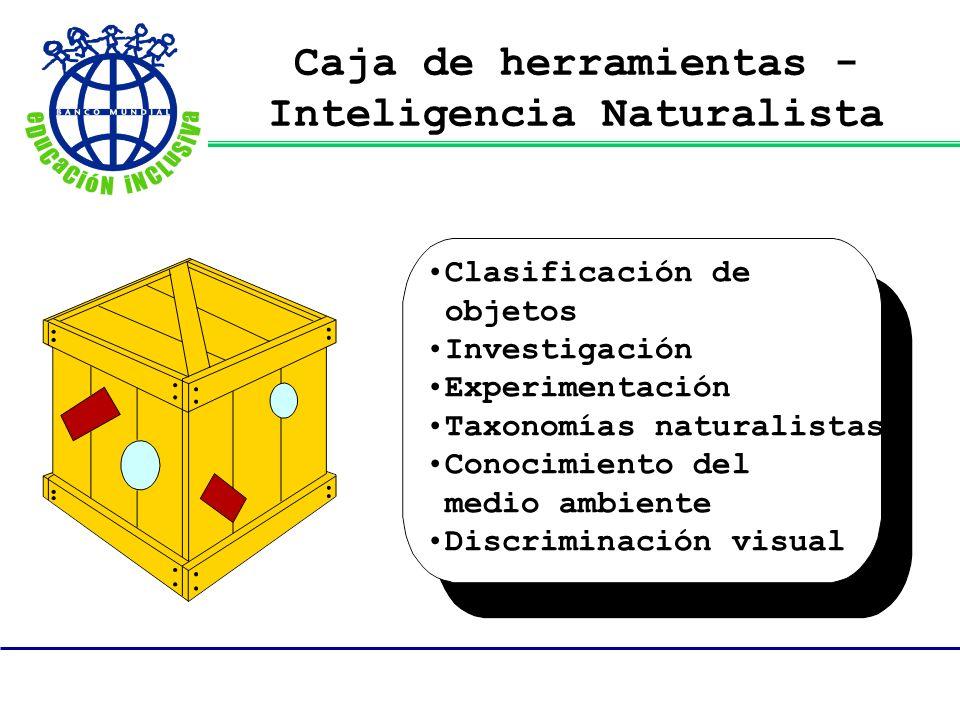 Caja de herramientas - Inteligencia Naturalista Clasificación de objetos Investigación Experimentación Taxonomías naturalistas Conocimiento del medio