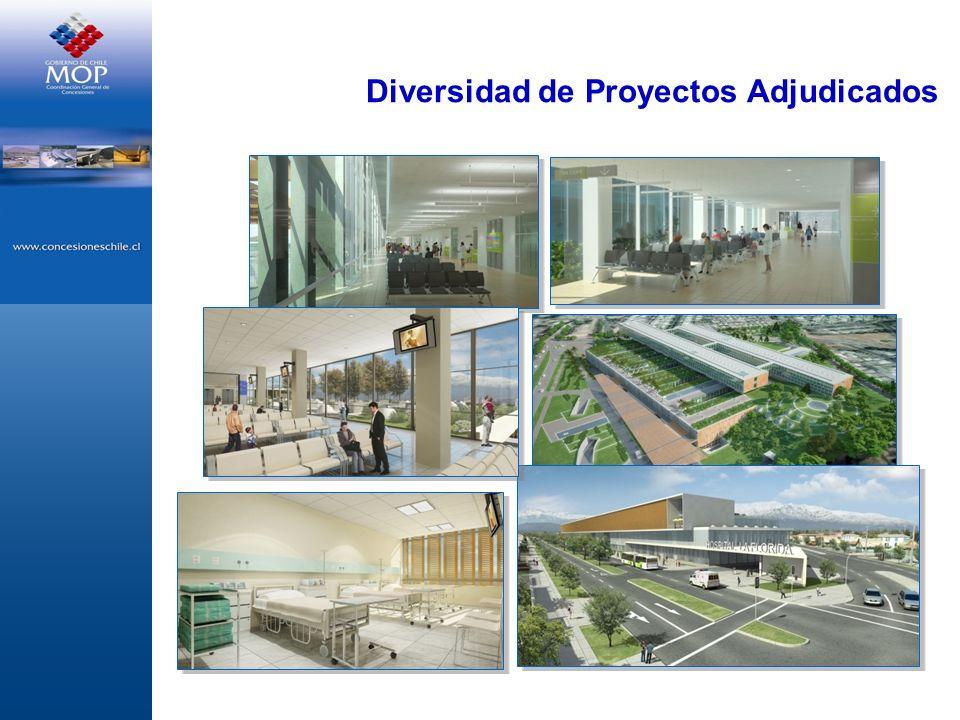 Diversidad de Proyectos Adjudicados
