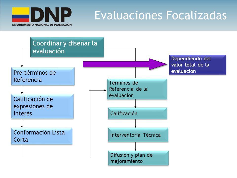Coordinar y diseñar la evaluación Pre-términos de Referencia Calificación de expresiones de interés Conformación Lista Corta Términos de Referencia de