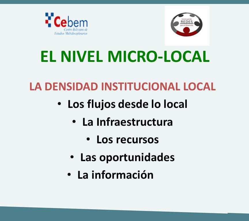 EL NIVEL MICRO-LOCAL LA DENSIDAD INSTITUCIONAL LOCAL Los flujos desde lo local La Infraestructura Los recursos Las oportunidades La información