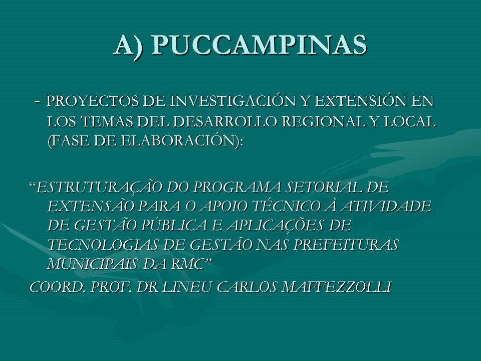 A) PUCCAMPINAS - PROYECTOS DE INVESTIGACIÓN Y EXTENSIÓN EN LOS TEMAS DEL DESARROLLO REGIONAL Y LOCAL (FASE DE ELABORACIÓN): - PROYECTOS DE INVESTIGACIÓN Y EXTENSIÓN EN LOS TEMAS DEL DESARROLLO REGIONAL Y LOCAL (FASE DE ELABORACIÓN): ESTRUTURAÇÃO DO PROGRAMA SETORIAL DE EXTENSÃO PARA O APOIO TÉCNICO À ATIVIDADE DE GESTÃO PÚBLICA E APLICAÇÕES DE TECNOLOGIAS DE GESTÃO NAS PREFEITURAS MUNICIPAIS DA RMCESTRUTURAÇÃO DO PROGRAMA SETORIAL DE EXTENSÃO PARA O APOIO TÉCNICO À ATIVIDADE DE GESTÃO PÚBLICA E APLICAÇÕES DE TECNOLOGIAS DE GESTÃO NAS PREFEITURAS MUNICIPAIS DA RMC COORD.
