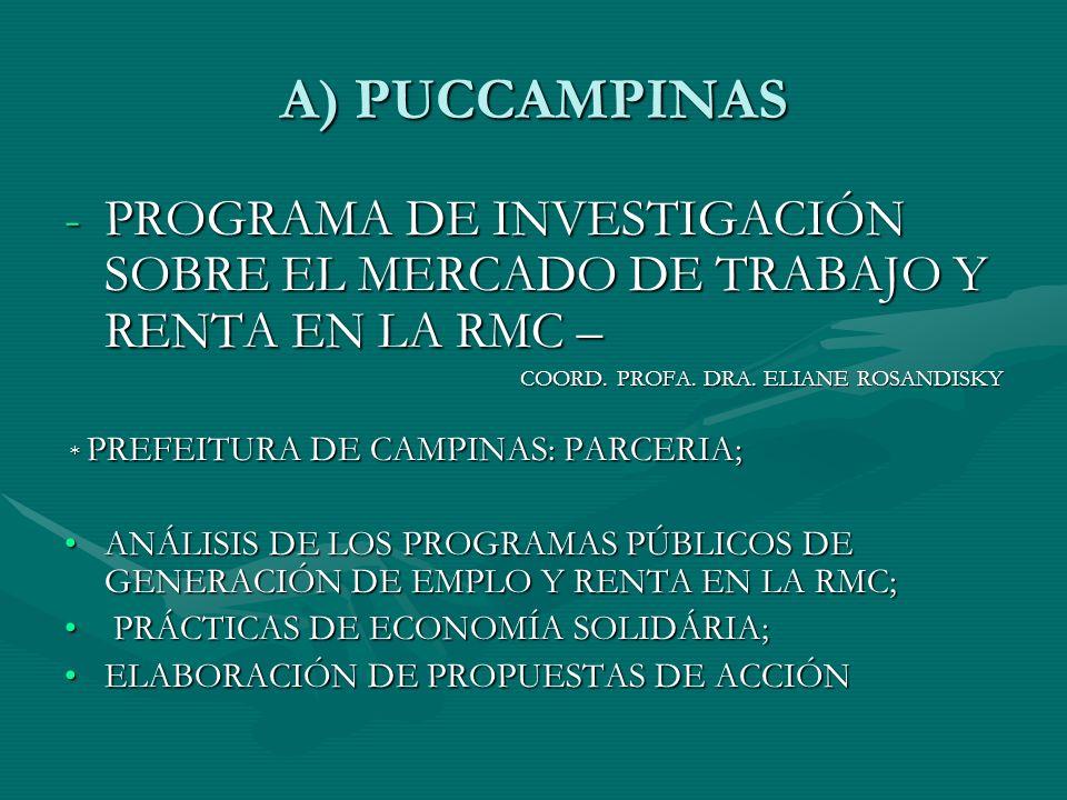 A) PUCCAMPINAS -PROGRAMA DE INVESTIGACIÓN SOBRE EL MERCADO DE TRABAJO Y RENTA EN LA RMC – COORD.