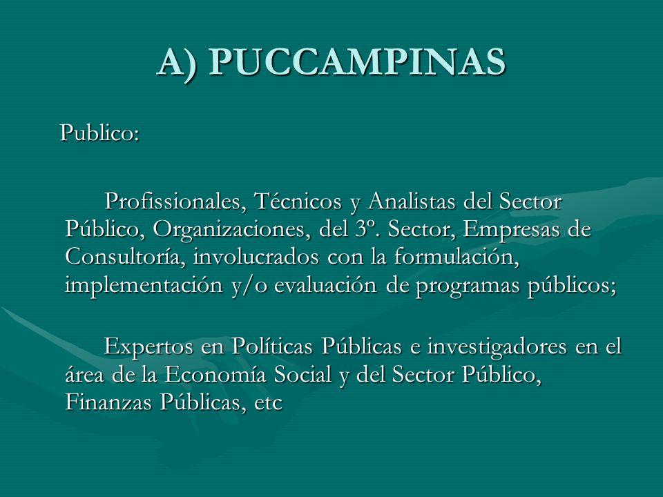 A) PUCCAMPINAS Publico: Publico: Profissionales, Técnicos y Analistas del Sector Público, Organizaciones, del 3º.