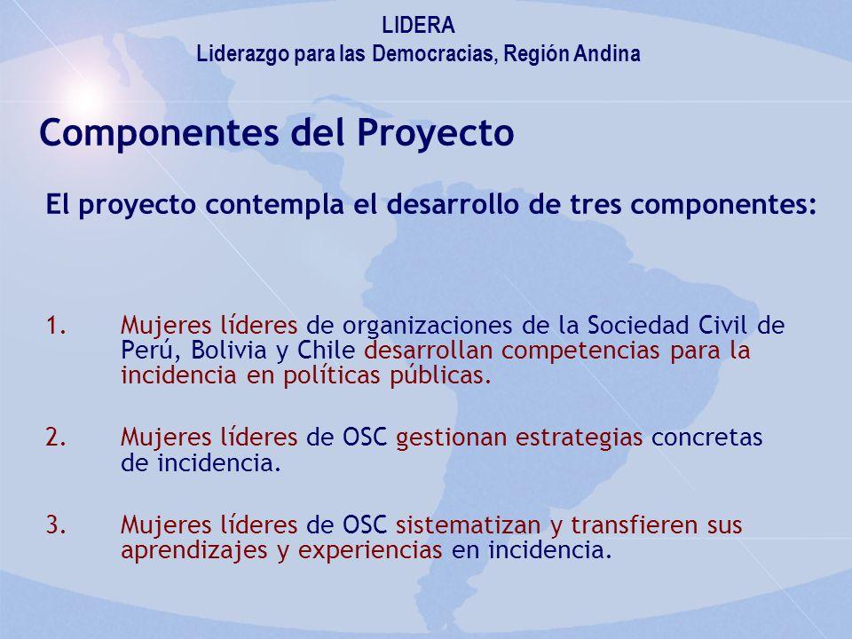 Componentes del Proyecto 1.Mujeres líderes de organizaciones de la Sociedad Civil de Perú, Bolivia y Chile desarrollan competencias para la incidencia en políticas públicas.