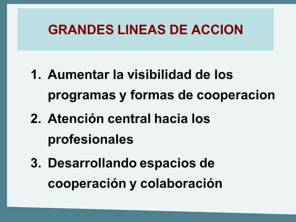 GRANDES LINEAS DE ACCION 1.Aumentar la visibilidad de los programas y formas de cooperacion 2.Atención central hacia los profesionales 3.Desarrollando