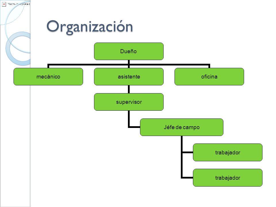 Organización Dueño mecánicoasistente supervisor Jéfe de campo trabajador oficina