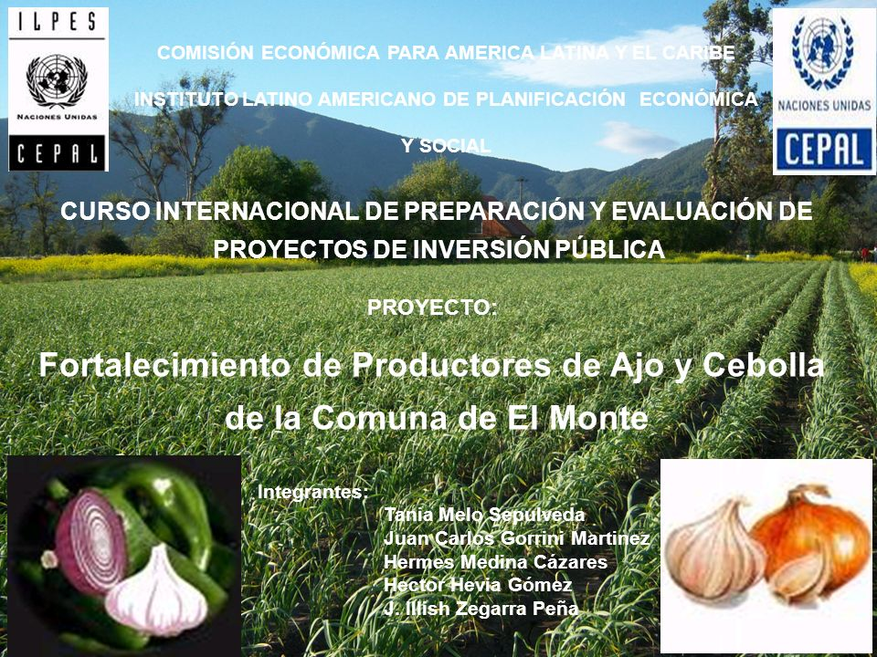 COMISIÓN ECONÓMICA PARA AMERICA LATINA Y EL CARIBE INSTITUTO LATINO AMERICANO DE PLANIFICACIÓN ECONÓMICA Y SOCIAL CURSO INTERNACIONAL DE PREPARACIÓN Y EVALUACIÓN DE PROYECTOS DE INVERSIÓN PÚBLICA PROYECTO: Fortalecimiento de Productores de Ajo y Cebolla de la Comuna de El Monte Integrantes: Tania Melo Sepulveda Juan Carlos Gorrini Martinez Hermes Medina Cázares Hector Hevia Gómez J.