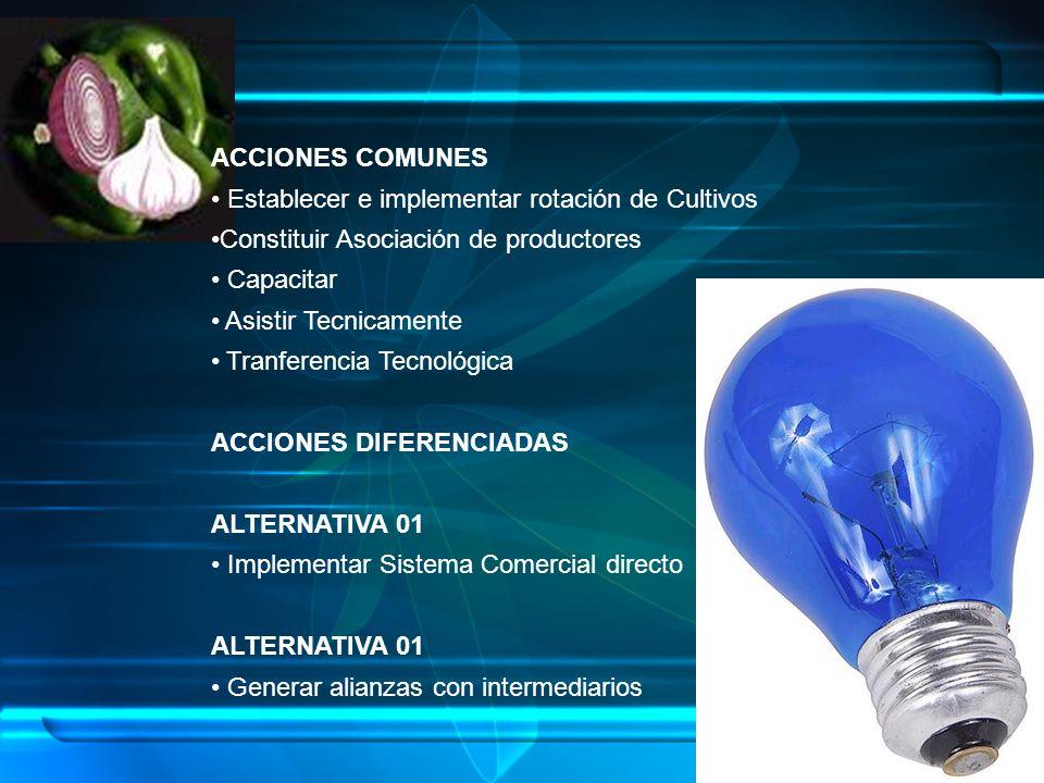 ACCIONES COMUNES Establecer e implementar rotación de Cultivos Constituir Asociación de productores Capacitar Asistir Tecnicamente Tranferencia Tecnol