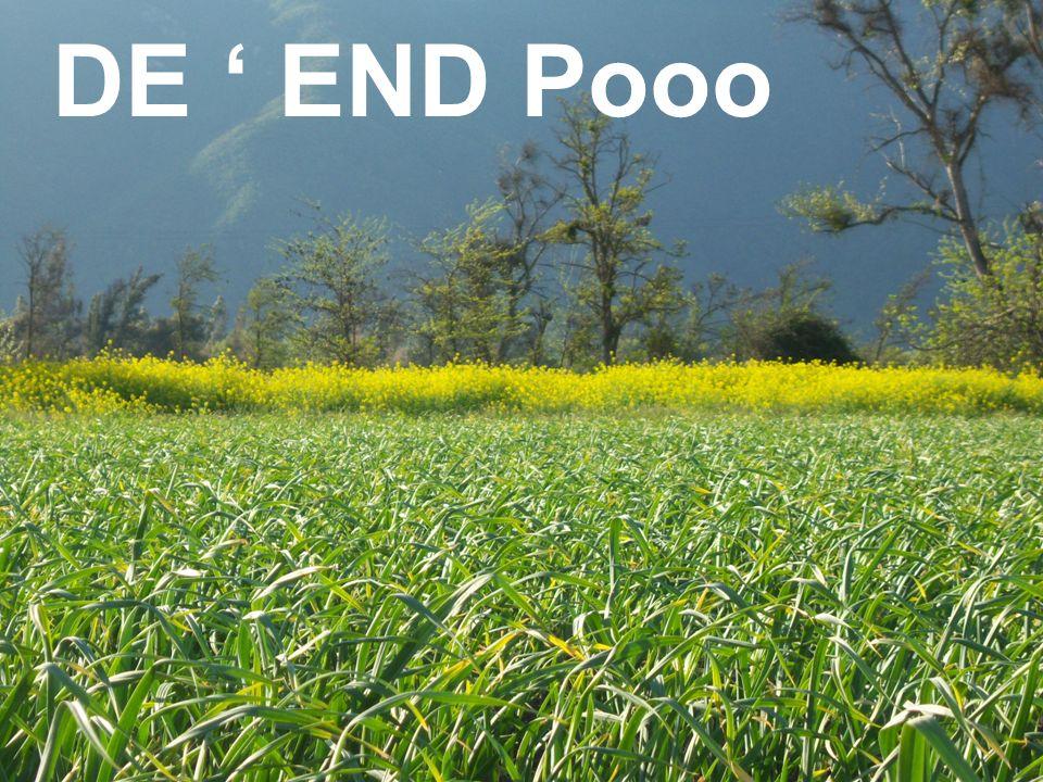 DE END Pooo