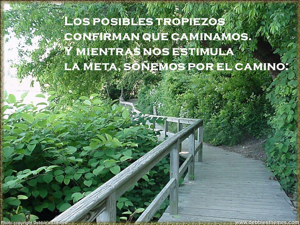 Los posibles tropiezos confirman que caminamos. Y mientras nos estimula la meta, soñemos por el camino: