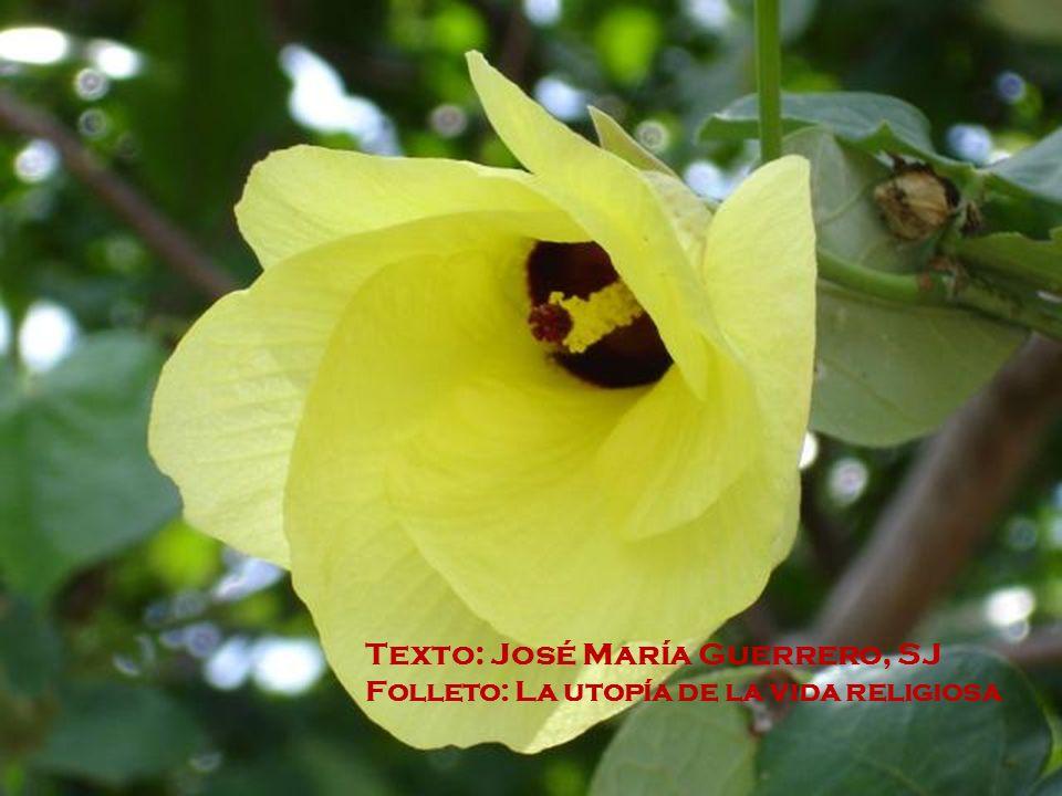 Texto: José María Guerrero, SJ Folleto: La utopía de la vida religiosa