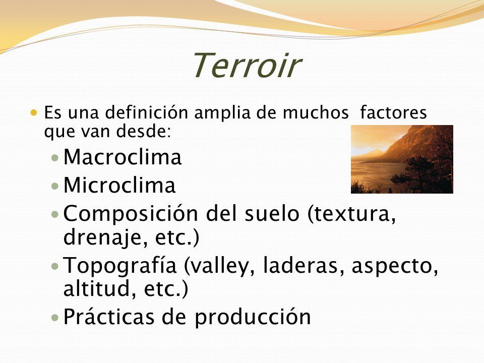 Terroir Es una definición amplia de muchos factores que van desde: Macroclima Microclima Composición del suelo (textura, drenaje, etc.) Topografía (va