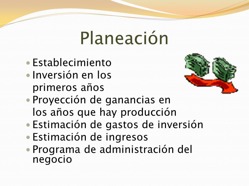 Planeación Establecimiento Inversión en los primeros años Proyección de ganancias en los años que hay producción Estimación de gastos de inversión Est