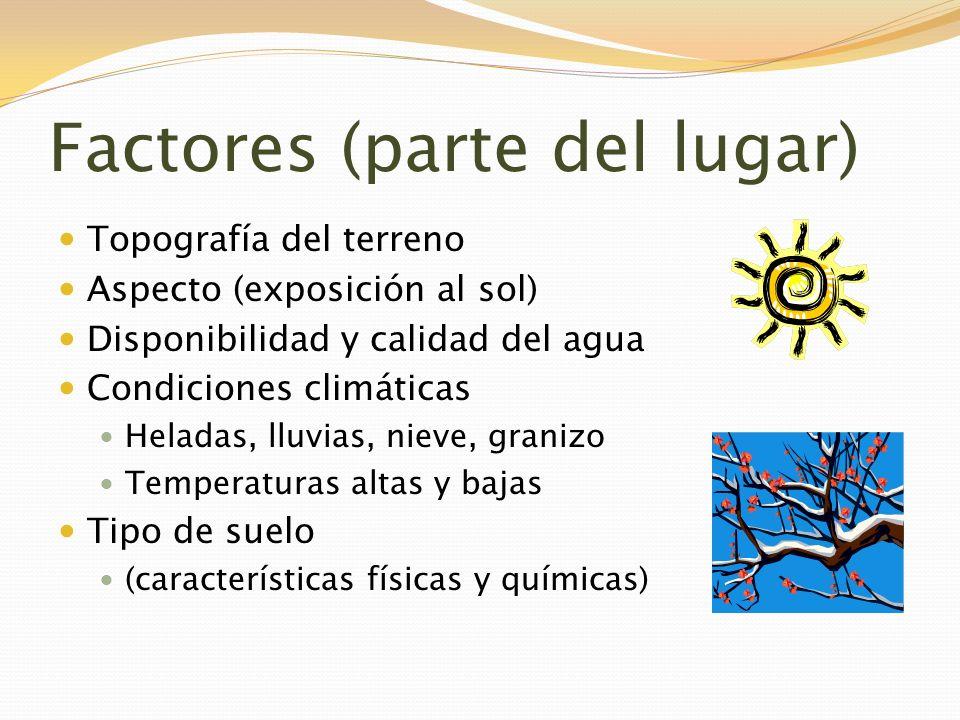 Producción Entrenamiento Manejo de la copa Riego Manejo de plagas (insectos, enfermedades, malezas) Cosecha Prácticas culturales despues de la cosecha