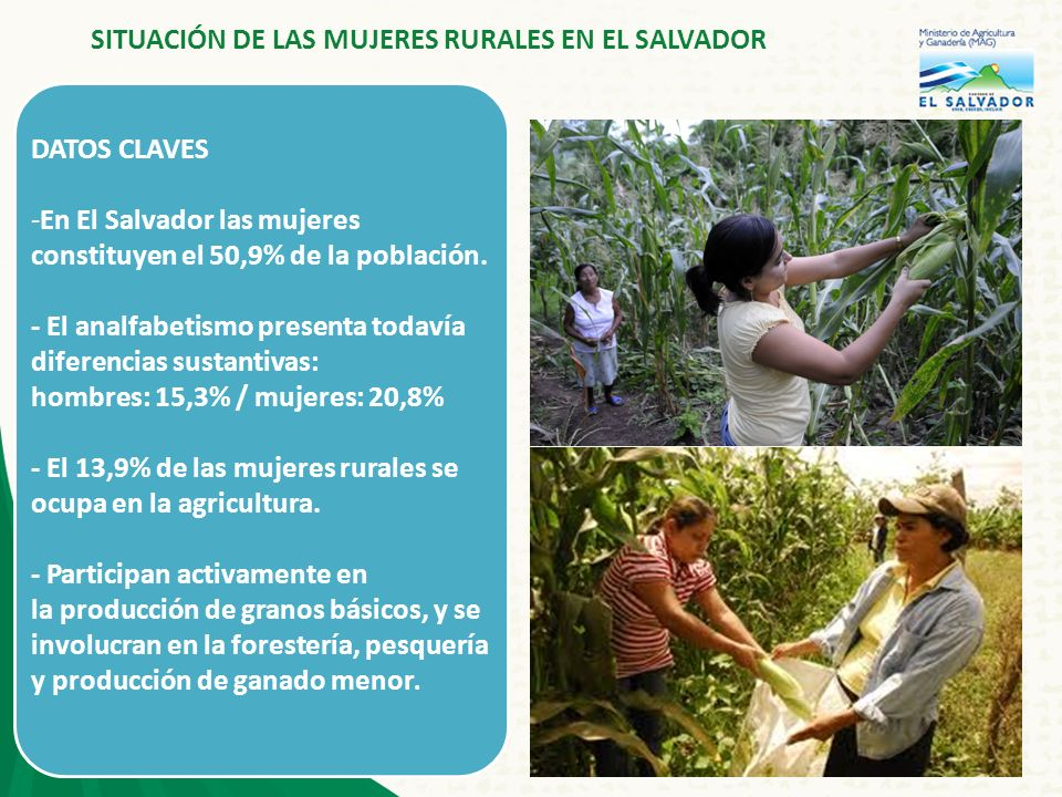 2 DATOS CLAVES -En El Salvador las mujeres constituyen el 50,9% de la población.