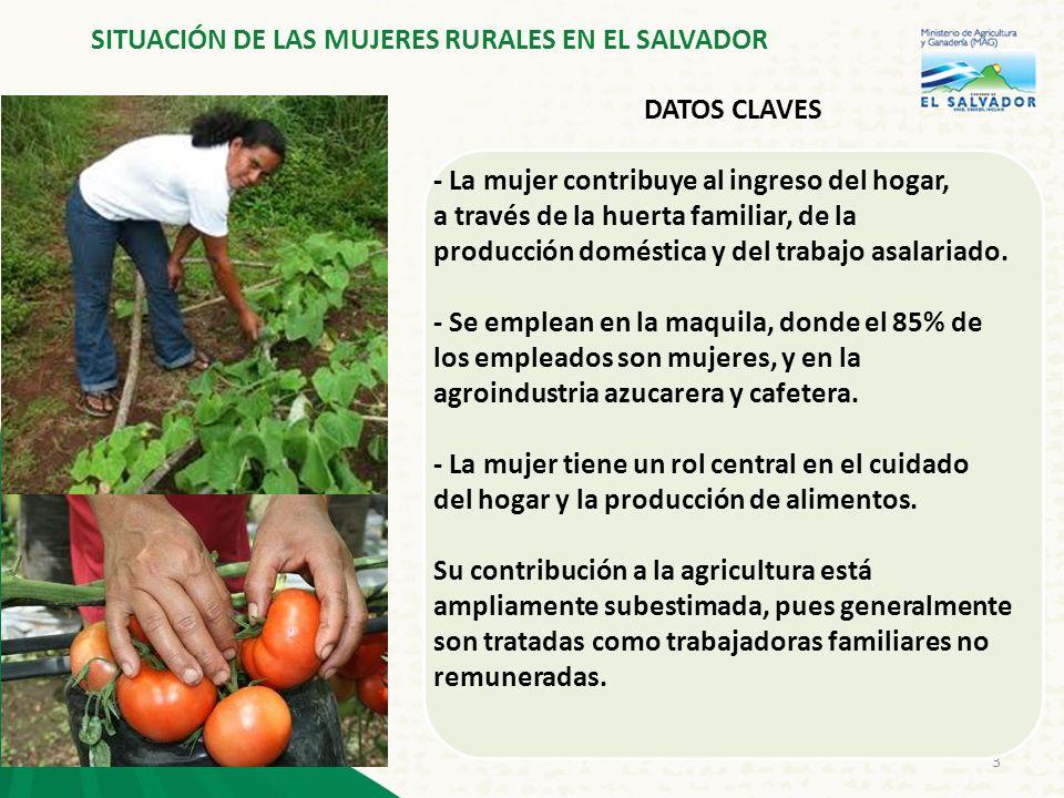 4 DATOS CLAVES -La población rural bajo la línea de pobreza del país es de 53,3% (las mujeres soportan el mayor peso) -Cerca del 27,3% de los hogares rurales está en manos de mujeres - El desempeño económico de las mujeres rurales todavía se caracteriza por un escaso mejoramiento de la equidad social, económica y cultural SITUACIÓN DE LAS MUJERES RURALES EN EL SALVADOR