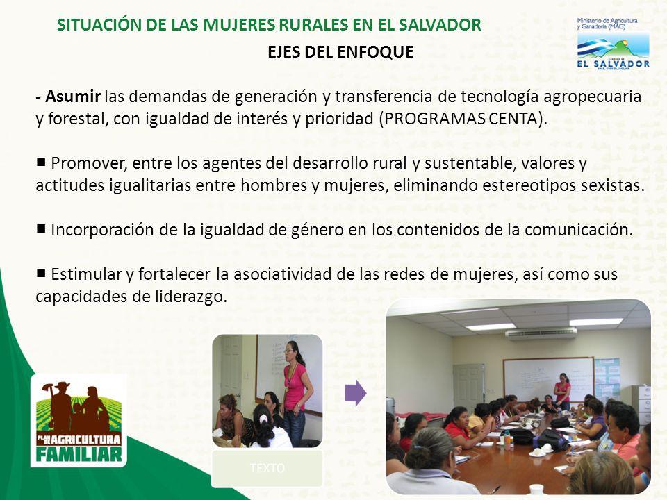 6 SITUACIÓN DE LAS MUJERES RURALES EN EL SALVADOR EJES DEL ENFOQUE - Asumir las demandas de generación y transferencia de tecnología agropecuaria y forestal, con igualdad de interés y prioridad (PROGRAMAS CENTA).