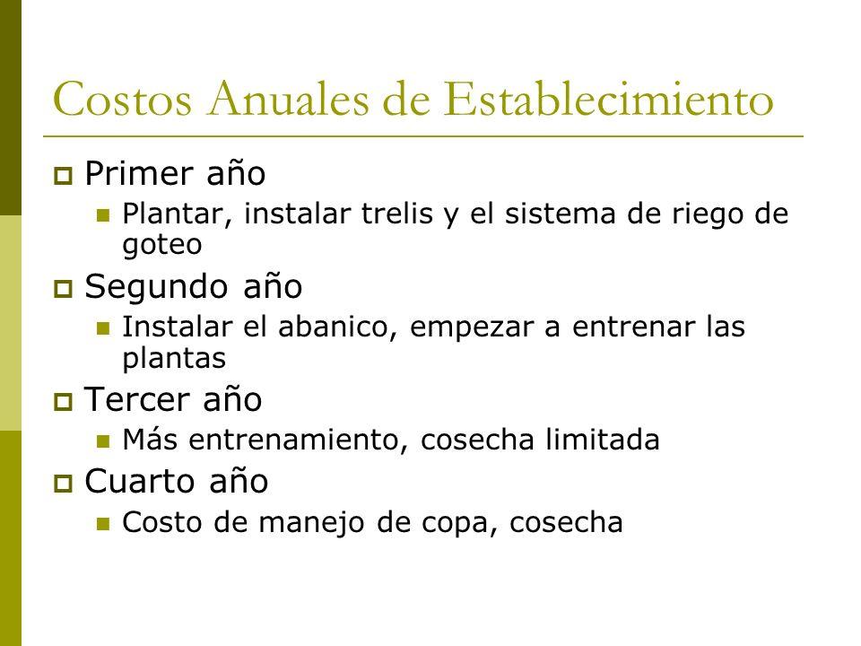 Costos Anuales de Establecimiento Primer año Plantar, instalar trelis y el sistema de riego de goteo Segundo año Instalar el abanico, empezar a entren