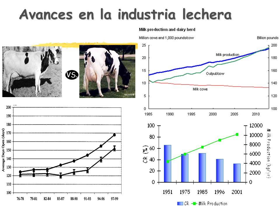 Avances en la industria lechera VS.
