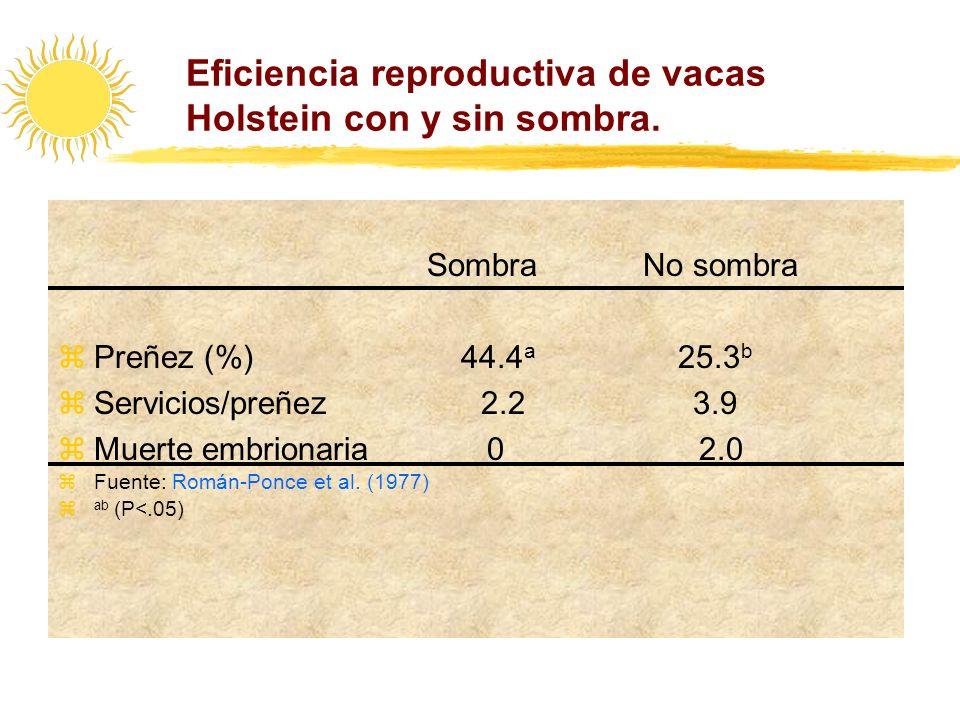 Eficiencia reproductiva de vacas Holstein con y sin sombra. Sombra No sombra zPreñez (%) 44.4 a 25.3 b zServicios/preñez 2.2 3.9 zMuerte embrionaria 0